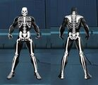 FullSkeletonMale
