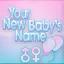 Web yournewbabysname.png
