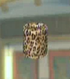 File:DOAXBVWristband(Leopard).jpg
