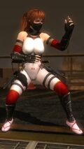Ninja Clain 2015 Costume Kasumi