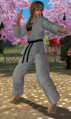 File:Doad hitomi c3.png