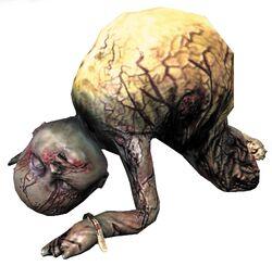 Crawler-full-body
