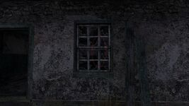 Ghost Window