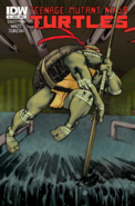 Teenage Mutant Ninja Turtles - Donatello as he appears on the front art cover of the IDW Comics