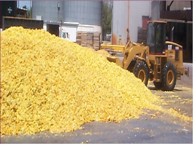 File:Citrus-peel-waste.jpg