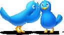 File:Gossip Birds.png