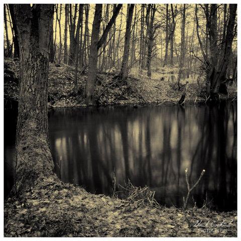 File:Lake Purity.jpg