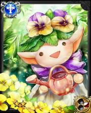 Gardener Panji NN