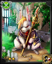 Student Rabbit Vanish NN