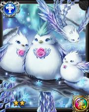 Snow Pigeon NN