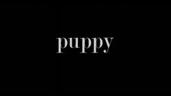 Puppydm2title