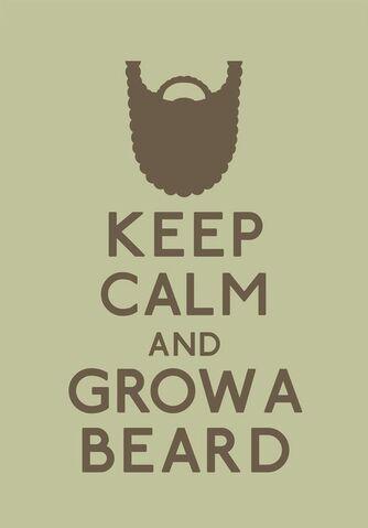 Datei:Keep Calm Beard.jpg
