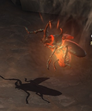 File:Naja Beetle.jpg