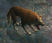 Wolfie2