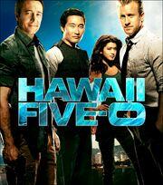 DHS- Hawaii Five-0 main poster