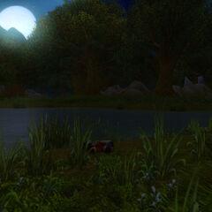 Sommernacht mit Clyde im Elwynnwald.