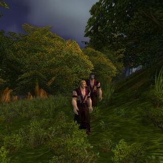 Anhänger der Kirin Tor verkleidet als Kultisten. Auf dem Weg zum Lager des Kultes