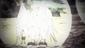 7-04 Hippogriffomon's Partner