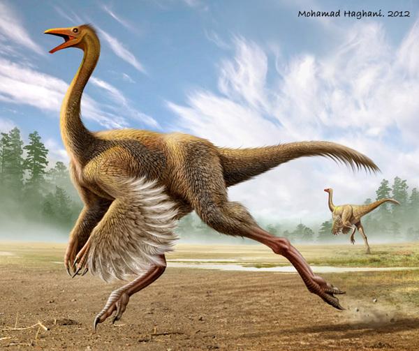 Struthiomimus | Dinosa...