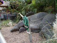 Ioa triceratops encounter m20(5)