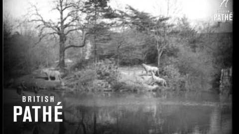 In Those Good Old Days - Filmed At Crystal Palace (1922)