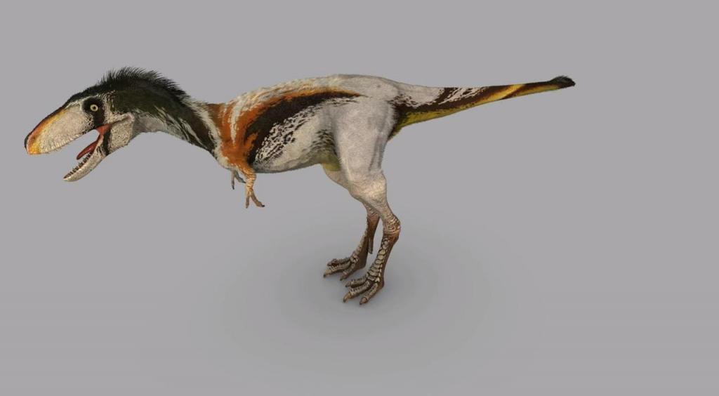 Raptorex | Dinosaur Alive Wiki | Fandom powered by Wikia Utahraptor Dinosaur Revolution