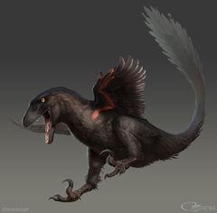 Raptor1.jpg