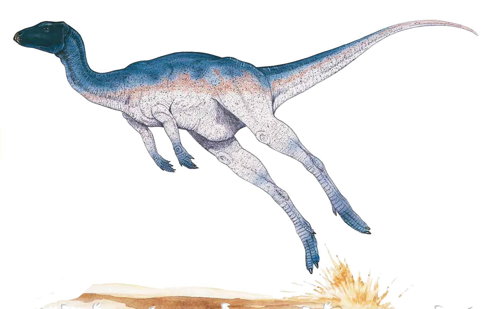 Zephyrosaurus | Dinopedia | Fandom powered by Wikia
