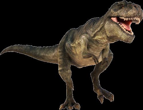 image t rex dinosaur clip art t rex dinosaur 1 png dinopedia