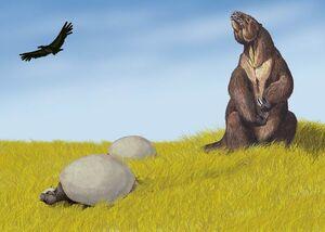 800px-Pleistocene SA