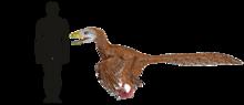 Deinonychus Size Comparison