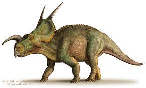 Einiosaurus6