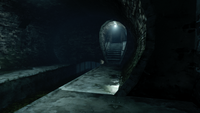 Boyle sewers