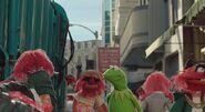 Kermit animal lipton