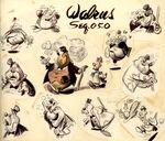 Model sheet - walrus
