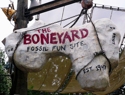 File:The Boneyard Playground at Disney's Animal Kingdom.jpg