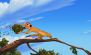 Timon Lion King 3 133