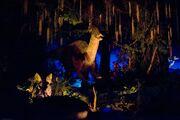 Animal Kingdom parasaurolophus