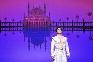 Prince Ali by Deen Van Meer