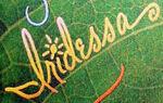 Iridessaautograph