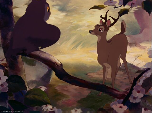 File:Bambi-disneyscreencaps.com-5100.jpg