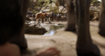 Jungle Book 2016 35