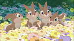 Thumper sisters