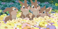 Thumper's sisters