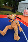 Pluto in basketball game