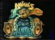 Animals Station