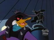 Dark-warrior-duck