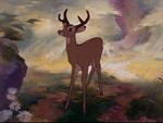 Bambi as a Buck