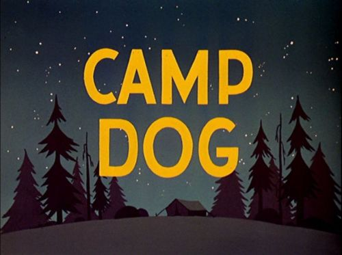 File:Camp-Dog.jpg