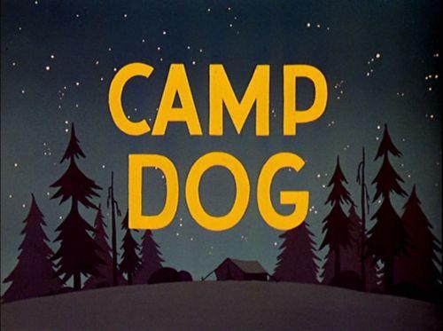 File:Camp-Dog.jpg